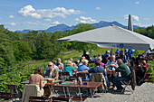 Guests sitting in a beer garden, Schloss Herrenchiemsee, Chiemsee, Chiemgau, Upper Bavaria, Germany