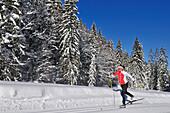 Woman cross-country skiing, Hemmersuppenalm, Reit im Winkl, Chiemgau, Bavaria, Germany