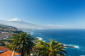 View from El Sauzal to Teide, 3718m, with snow, the island´s landmark, highest point in Spain, palm trees, volcanic mountain, coastline, Atlantic ocean, Tenerife, Canary Islands, Spain, Europe