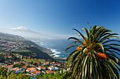 View from El Sauzal to Teide, 3718m, with snow, the island´s landmark, highest point in Spain, palm tree, volcanic mountain, coastline, Atlantic ocean, Tenerife, Canary Islands, Spain, Europe