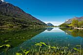 Reflection of mountains in a lake, Lago di Piano, near Porlezza, Province of Como, Lombardy, Italia