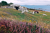 Prehistoric tomb, Bant's Carn, St. Marys, Isles of Scilly, Cornwall, England, Great Britain