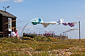 Washing on the line, Dungeness, Kent, England, Great Britain