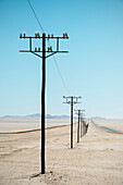 Endless row of electricity pylons in the desert near Luderitz, Namibia, Africa