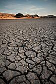 Detail der rissigen Erde einer Tonpfanne sog. Vlei und rote Sand Dünen bei Sossusvlei, Namib Naukluft Park, Namibia, Namib Wüste, Afrika