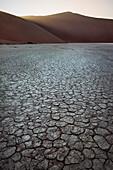 Cracked soil at Dead Vlei, around Sossusvlei, Namib Naukluft National Park, Namibia, Namib desert, Africa