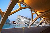 CAC. Architect Santiago Calatrava, Ciudad de las Artes y de las Ciencias. City Of Arts and Sciences. Valencia. Comunidad Valenciana. Spain.