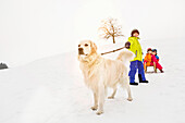 Boy with dog pulling two friends on toboggan in snow