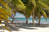 Tropical island at Laughing Bird Cay, Caribbean Sea, Placencia, Belize