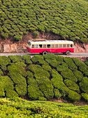A bus travels along a road in Munnar, a tea plantation hill station in Kerala, India