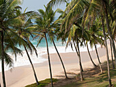 Palm trees and beach on the Indian Ocean at Tangalle, Sri Lanka