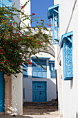 Typical blue and white houses on street in Sidi Bou Said, Tunisia