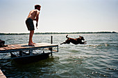 Young man watching pet dog jumping from pier into water