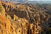 Chine , province du Yunnan , Yuanmou , La forêt de la Terre en argile de Yuanmou est un endroit classé pittoresque couvrant une superficie de 50 km ². Il a été formé par le mouvement géologique et l'érosion du sol il ya un ou deux millions d'anné