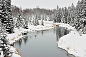 Open water of Junction Creek with fresh snow, Greater Sudbury (Lively), Ontario, Canada.