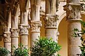 Renaissance cloister, XVI century, Monastery of San Jeronimo de Yuste, XV century, region of the Vera, Caceres, Extremadura, Spain, europe.