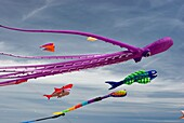Kites in Malvarrosa beach, Valencia, Spain