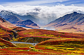 Fall Colours And Alaska Range, Denali National Park, Alaska