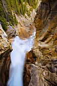 Artist's Choice: Panther Falls, Banff National Park, Alberta