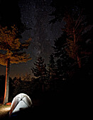 Tent Lit From Inside With Milky Way Above Seen Through Trees In Algonquin Provincial Park, Ontario.