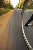 Wide Angle View Of A Biycle Tire In Motion On A Bike Path In Anchorage, Southcentral Alaska, Autumn