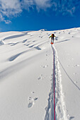 Skier Breaks Trail And Leads Rope Team From A 8000-Foot High Camp On The Triumvirate Glacier To The Torbert Plateau To Climb Mount Torbert, Tordrillo Mountains, Winter In Southcentral Alaska