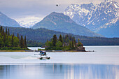 Dehavilland Beaver Float Plane On Lake Clark With A Cessna Super Cub Behind It Coming In For A Landing, Lake Clark National Park, Southcentral Alaska, Summer