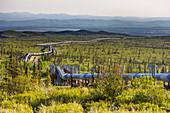 Trans Alaska Oil Pipeline Traverses The Tundra In Interior Alaska.