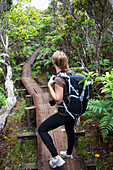 'Female hiker on Alakai Swamp boardwalk; Kauai, Hawaii, United States of America'