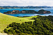 'Coastline Of Urupukapuka Island, The Largest Of All The Islands In The Bay Of Islands; New Zealand'
