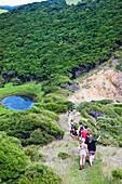 'A Group Of Tourists Walking In A Row Down A Trail On Urupukapuka Island; New Zealand'