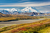 Red bearberry covers the tundra, Mt McKinley and the Alaska range mountains border the McKinley river bar, Denali National Park, Alaska.