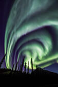 The aurora borealis lights the night sky in Alaska's Brooks Range, Arctic, Alaska