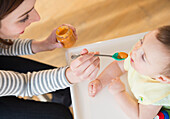 Mother feeding baby in high chair, Jersey City, New Jersey, USA