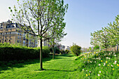 France, Paris, 18th district, District of the Urban Development Zone Pajol, HQE ( High environmental quality ), Garden of Eole