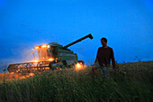France, Pas de Calais, combine harvester in a corn field.