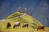 Georgia, Caucasus Range, Trinity Church, Kazbegui Region