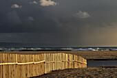 SPAIN, Andalusia, beach of Tarifa, region of Cadiz. Costa de la Luz.