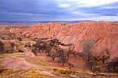 Turkey, Cappadocia, natural landscape Heritage of the UNESCO