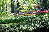 Netherlands, Lisse, Keukenhof garden