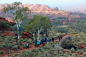 'Tourist at Kings Canyon; Northern Territory, Australia'