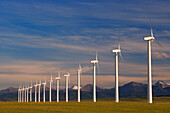 Row Of Wind Turbines, Alberta, Canada