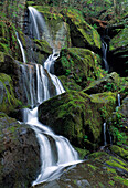 Thousand Drips Waterfall, Roaring Fork Area, Great Smoky Mountains National Park, Tennessee, Usa