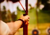Arm Of An Archer