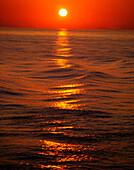 'Sunset Over The Sea; Ireland'