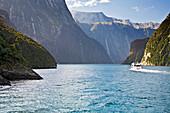 Cleddau River, Fiordland National Park, South Island, New Zealand, Boat Tour