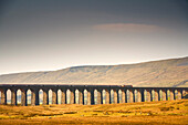 Train And Bridge, Yorkshire Dales, England