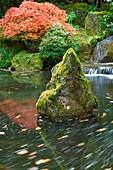 Garden, Oregon, United States Of America