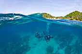 'Apo Island Marine Park Negros Oriental Island Philippines Southeast Asia; Scuba Divers'