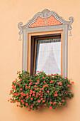 Decorative Window With A Flower Box, Castelrotto, Alto Adige, Italy